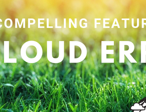 Most Compelling Features of a Robust ERP Suite